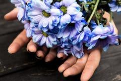 Händer som rymmer gruppen av blommor royaltyfri foto