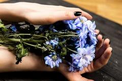 Händer som rymmer gruppen av blommor royaltyfri bild