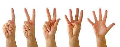 Händer som visar nummer Arkivfoton