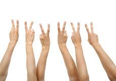 händer som visar teckenseger Arkivfoto