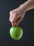 hänga för äpple Fotografering för Bildbyråer