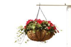 hänga för blommor Arkivbild
