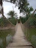 hänga för bro som är trä arkivbilder
