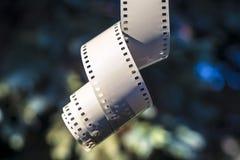 Hänga för filmremsa Fotografering för Bildbyråer
