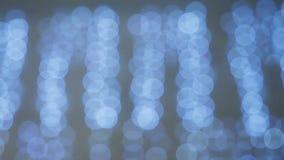Hänga för girland för blinkande ljus blått lager videofilmer