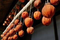 Hänga och torka torkade persimoner arkivbild