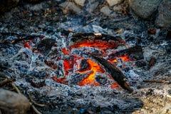 Hänga ut runt om branden Fotografering för Bildbyråer