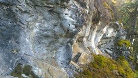 Hängande över klippavägg som bildar en tunnel Arkivfoto