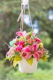 Hängande blommavas och buty Fotografering för Bildbyråer