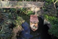 Hängande bro i rainforesten Arkivfoto