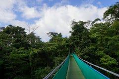 Hängande bro till och med den frodiga tropiska markisen i Costa Rica royaltyfri foto