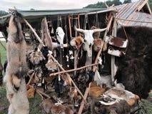 Hängande djur skallar och päls i en medeltida marknad Royaltyfria Bilder