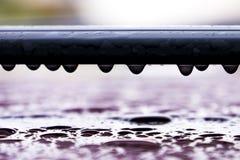 Hängande droppar av vatten på biltaket efter regn, naturbakgrund Royaltyfri Bild