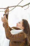 Hängande fågelförlagematare för lycklig ung kvinna på tree Royaltyfri Foto