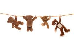 Hängande grupp av nallebjörnar på en klädlinje med pinnor Arkivfoto