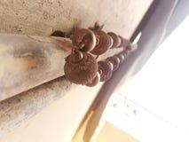 Hängande halsband på röret arkivfoto