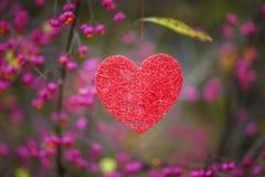 Hängande hjärta för pappers- hjärta på skogen Royaltyfri Foto