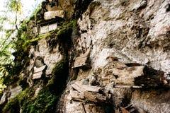 Hängande kistor, gravar Gammal kista med skallar och ben som är närliggande på en vagga Traditionell jordfästningplats, kyrkogård Arkivbild