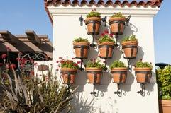 hängande krukar för blomma Royaltyfri Bild