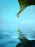 hängande leafspets för droppe Royaltyfri Foto