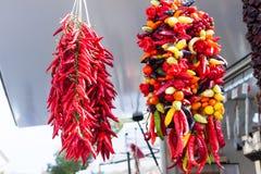 Hängande rader av blandade peppar för den varma chili som är till salu på Sineu, marknadsför, Majorca Arkivbilder