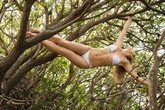 hängande treekvinna Arkivbild