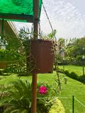 Hängande växtkruka royaltyfria bilder