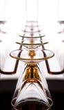 hängande wineglasses för champagne Royaltyfria Foton