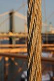 hängare för brobrooklyn kabel Royaltyfria Bilder