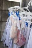 Hängaren förtjänar med pinnen med underkläderna och sockan Arkivfoto