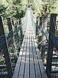 Hängebrücke auf dem Fluss, Finnland Stockbilder