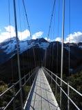 Hängebrücke auf der Hooker-Tal-Bahn, Berg-Koch National Park lizenzfreie stockbilder