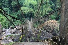 Hängebrücke durch tropisches Indien Stockfotografie