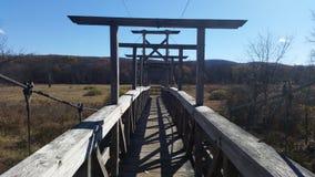 Hängebrücke im Sumpf lizenzfreies stockbild