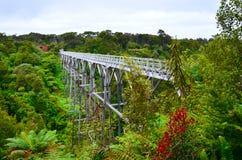 Hängebrücke, Südküsten-Bahn stockbild
