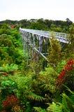 Hängebrücke, Südküsten-Bahn, Nationalpark Fiordland, N lizenzfreie stockbilder