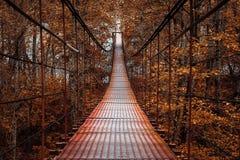 Hängebrücke, schöner Herbst Stockfotografie