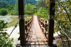 Hängebrücke unter tropischem Grün Stockbild