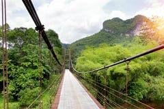 Hängebrückegehweg zum Dschungel Stockfotos