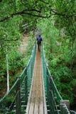 Hängebro i den Oulanka nationalparken. Fotografering för Bildbyråer