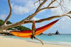 Hängematte auf Stränden auf Seychellen-Inseln Lizenzfreie Stockfotos