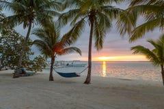 Hängematte auf tropischem Strand Stockfoto