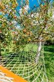 Hängematte, die unter Apfelbaum mit roten Äpfeln im Yard des ländlichen Hauses hängt Lizenzfreie Stockfotos