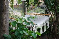 Hängematte im Garten, der mit Grün bedeckt wird, verlässt in Europa stockbilder