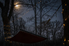 Hängematte unter dem Mond Stockfoto