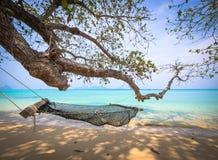 Hängematte unter einem Baum auf dem Strand Stockbilder