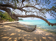 Hängematte unter einem Baum auf dem Strand Stockfotografie
