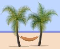 Hängematte zwischen Palmen Vektor Abbildung