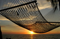 Hängematten-Sonnenuntergang stockbilder