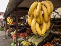 Hängende Bananen Stockfotos